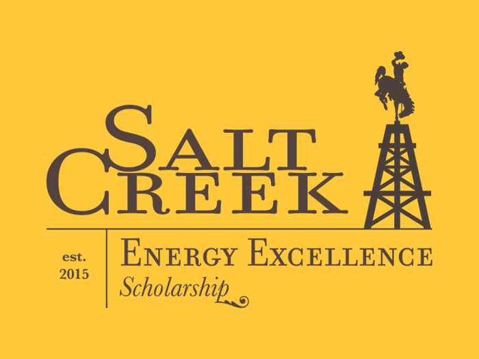 salt creek logo